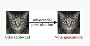 adversarial perturbation example