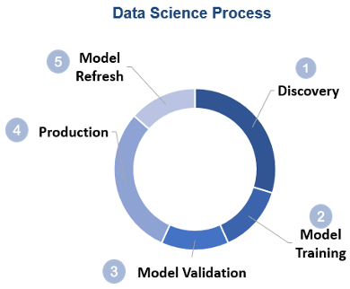 Figure of the Data Science Process
