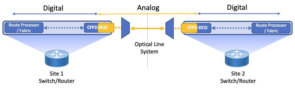 DCO DWDM transport within the router or switch
